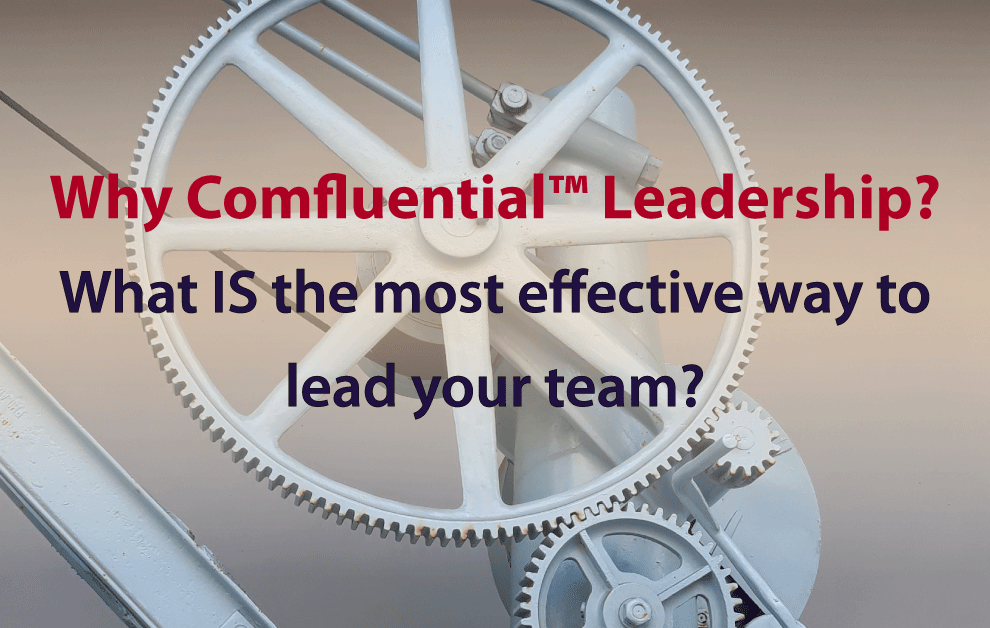 What IS the most effective way to lead your team?